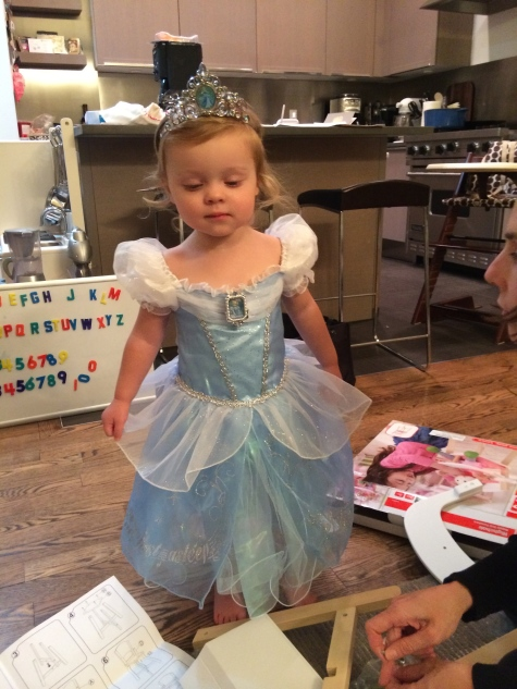We had spent the day watching Cinderella. When she got this dress, I thought she would pass out.